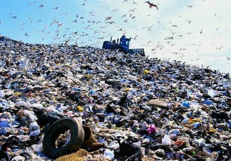 El arte de tirar la basura | CTMA | Scoop.it
