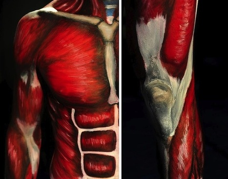 Students Learn Anatomy By Painting a Live Body | Life | Scoop.it