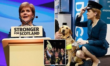 The SNP will try to BLOCK Brexit laws in Westminster, Sturgeon vows | My Scotland | Scoop.it
