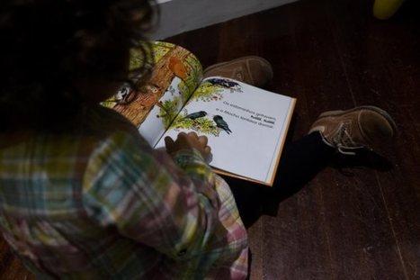 O país a falar sobre livros para crianças | Pelas bibliotecas escolares | Scoop.it