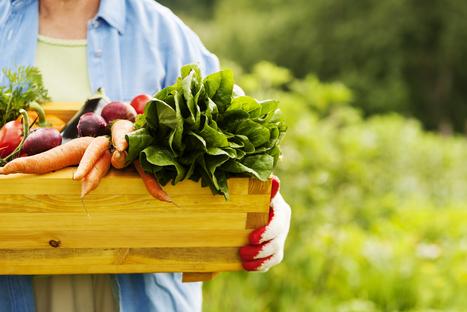 Quel impact a notre alimentation sur notre santé ? - e-RSE.net | Actualités & Tendances | Scoop.it