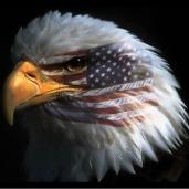 ISLAMIC JIHAD WATCH- Protecting the USAAmerica | Restore America | Scoop.it