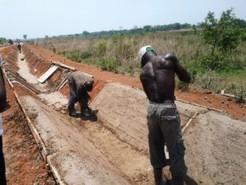 Le Cameroun perd 25% de sa production à cause du manque d'infrastructures de conservation | Questions de développement ... | Scoop.it