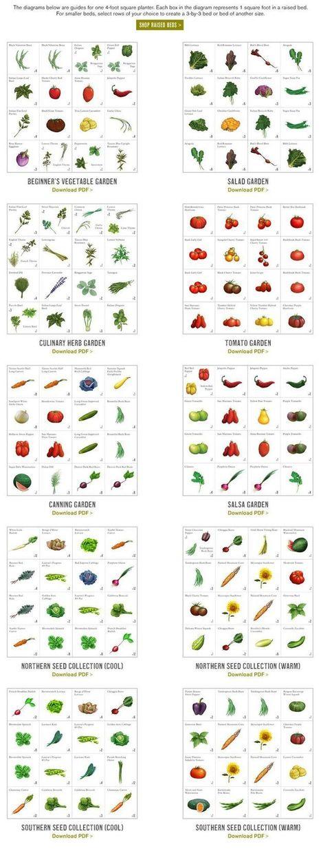 Planting Schedules | gourmet jam | Scoop.it