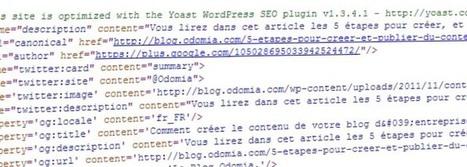 Un plugin gratuit et un plugin payant pour améliorer votre référencement sous WordPress | Wordpress pour les noobs comme moi | Scoop.it
