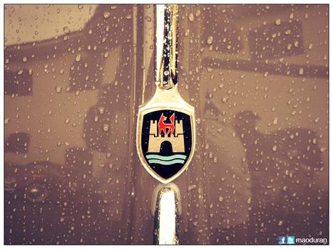 VW | Racing is in my blood | Scoop.it