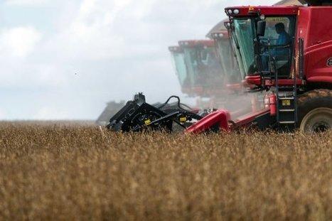 5 million Brazil farmers in legal feud with Monsanto over $2 Billion GM soy seed royalties | Vertical Farm - Food Factory | Scoop.it