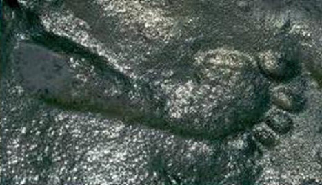 [?!?] 290 million year old human footprint has researchers scratching their heads... | HLD's Miscellaneous... | Scoop.it
