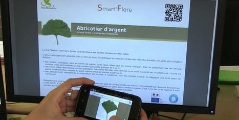 Smart'Flore 2.0 les plantes décodées - ML actu   Coopération, libre et innovation sociale ouverte   Scoop.it