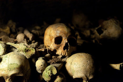 Lady 'Vampire' Skull Discovered in Venice -- and That's Not the Shocking Part | For Lovers of Paranormal Romance | Scoop.it