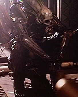 253 Photos from the Set of Ridley Scott's ALIEN | test | Scoop.it