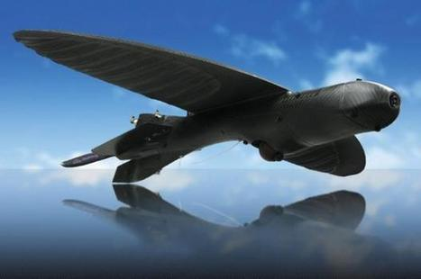US Army develops a drone that looks like a bird   TweakTown   Business Video Directory   Scoop.it