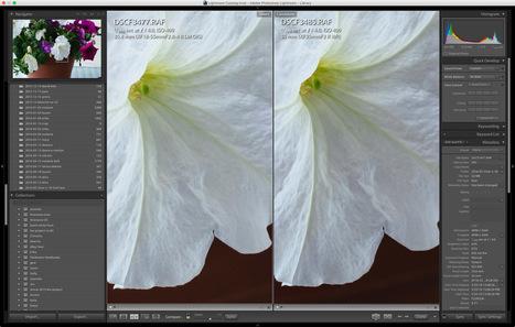 Fuji 35 f/2 v. 18-55/XF | Fujifilm X Series APS C sensor camera | Scoop.it