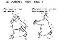 Mariage pour tous : François Hollande agent du Nouvel Ordre Mondial | A New Society, a new education! | Scoop.it