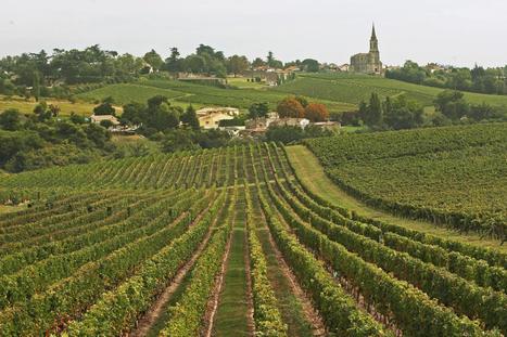 Six routes des vins pour découvrir le vignoble bordelais | Oenotourisme en Entre-deux-Mers | Scoop.it