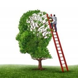 Creare nuovi ricordi cambiando direttamente il cervello   Mind & Brain   Psicologia, neuropsicologia e neuroscienze   Scoop.it