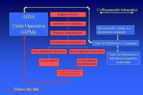 DEFINICION DE ALGORITMO | algoritmos | Scoop.it