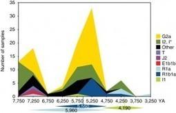 La maggior parte dei maschi Europei discende da pochissimi antenati dell'Età del Bronzo | Genealogia | Scoop.it