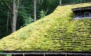 La toiture végétalisée : un concept qui a tout bon | Le flux d'Infogreen.lu | Scoop.it