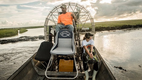 Equity Firm Restores Louisiana Marshland to Earn Credits It Can Sell | Sustainable Futures | Scoop.it