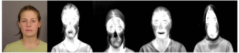 Deep Neural Nets Can Now Recognize Your Face in Thermal Images | Social Foraging | Scoop.it