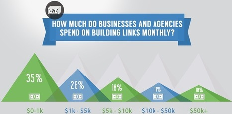 Link Building Survey 2013 - The Results [INFOGRAPHIC] | Technology , SEO and Social Media | Scoop.it