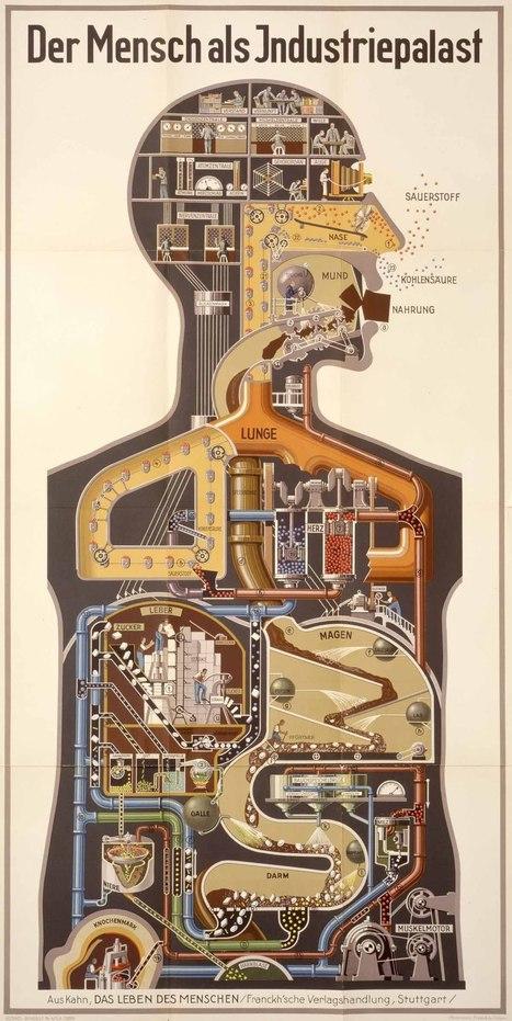 El hombre máquina de Fritz Kahn | tecno4 | Scoop.it