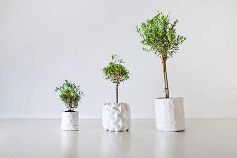 Crush | GROWTH, le pot qui pousse en même temps que votre plante ! | décoration & déco | Scoop.it