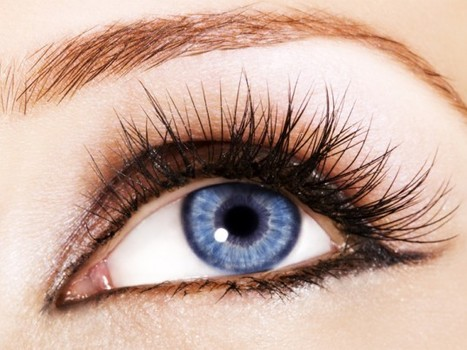 6 Toxic Ingredients You Should Avoid in Cosmetics | Ecouterre | Olivier LAVANCIER | Scoop.it