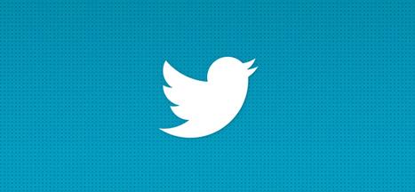 Ces propos n'engagent que moi, le grand paradoxe Twitter | Numérique Ille-et-Vilaine | Scoop.it