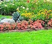 Fall Lawn Care Tips - Leovan Design   Landscape and Garden Design   Scoop.it