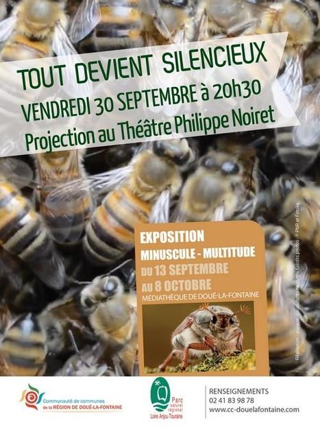 Tout devient silencieux - Cinéma Doué-la-Fontaine (Maine-et-Loire) | Variétés entomologiques | Scoop.it