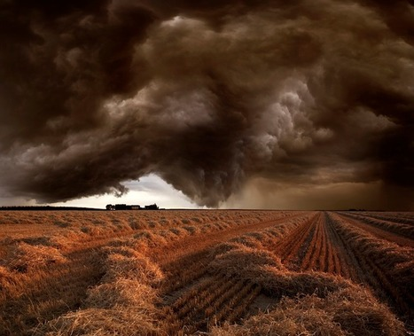 Franz Schumacher, Harvest Time...   Art for art's sake...   Scoop.it