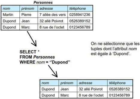 Théorie de base de données : Telecharger Cours informatique | Cours Informatique | Scoop.it
