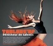 Appel à projet pour Toulous'Up ! - Toulouseblog.fr (Blog)   La Mêlée Numérique by Lydia   Scoop.it