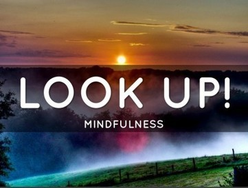 Leaders: Look Up and Engage with Mindfulness — Break The Frame | Mindfulness & The Mindful Leader | Scoop.it