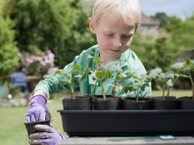Garden-Based Learning | Resources for the Geography Teacher | Scoop.it