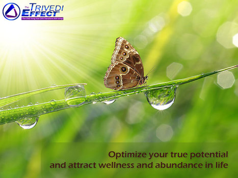 Start on your path to self discovery and true happiness through The Trivedi Effect® | Health and Wellness | Scoop.it