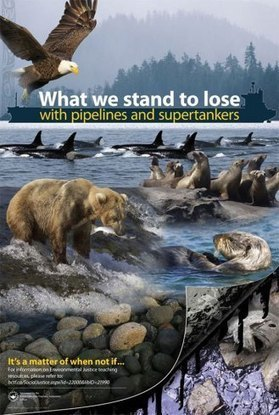 B.C. teachers' union defends anti-pipeline teaching materials | Canada | News | National Post | leading and learning | Scoop.it