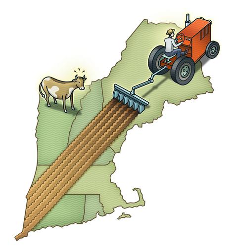 Where the organic food movement needs to go - The Boston Globe | Online Organic Food | Scoop.it