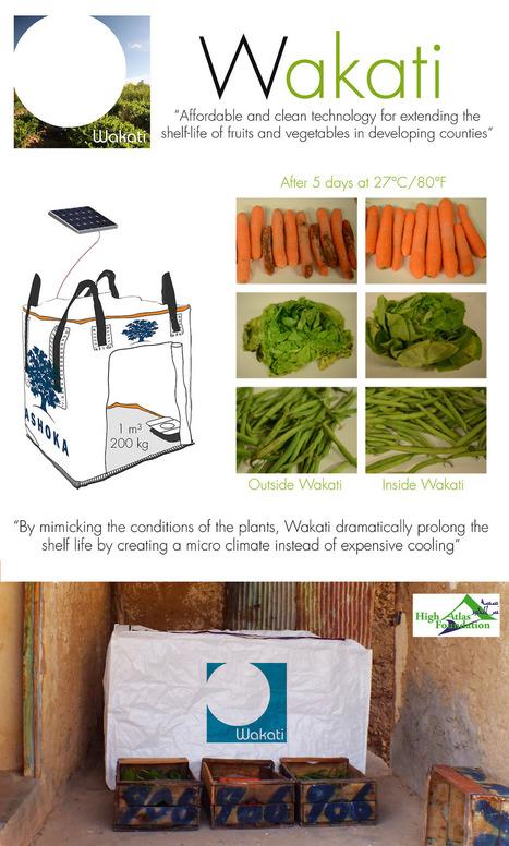 Wakati prolonge la fraîcheur des fruits et légumes grâce à un sac, de l'eau et l'énergie solaire | Innovations, Créations, Solutions... | Scoop.it