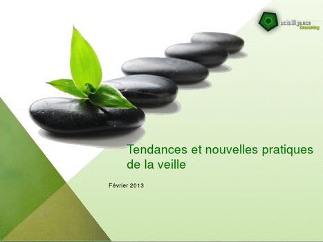 Tendances et nouvelles pratiques de la veille | Docdoc | Scoop.it