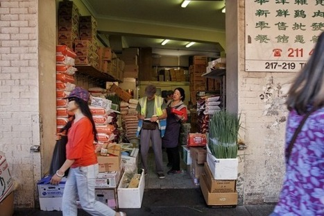 Year of the Monkey: The changing face of Sydney's Chinatown | Urban Places | Scoop.it