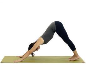 yoga-asanas-for-beginners.jpg (324x248 pixels) | Fitness Promotions | Scoop.it