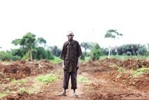 New report uncovers deforestation land grab in Uganda funded by World Bank | Human Beings and Their War With the Earth | Scoop.it