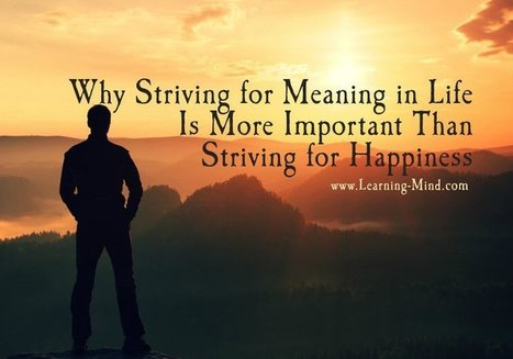 Why Striving for Meaning in Life Is More Important Than Striving for Happiness | Executive Coaching Growth | Scoop.it