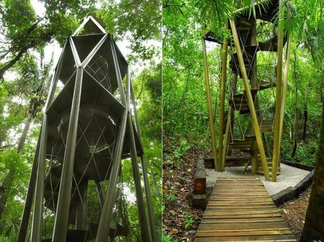 Panama Rainforest Discovery Center | sustainable architecture | Scoop.it
