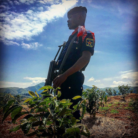 Fighting For Coffee In The Congo At Saveur du Kivu | Coffee News | Scoop.it