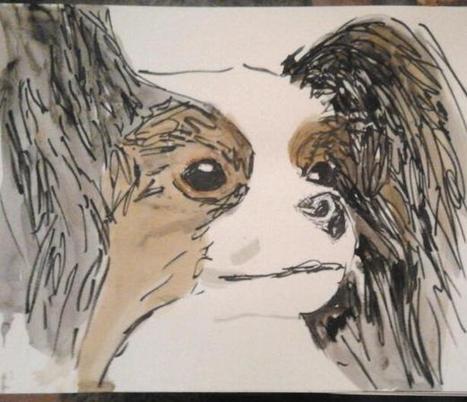Ein professionelles Tierportrait nach Fotovorlage | kleckerlabor | Scoop.it