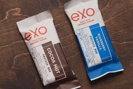 Why an agency invested in insect snack bars | Entomophagy: Edible Insects and the Future of Food | Scoop.it